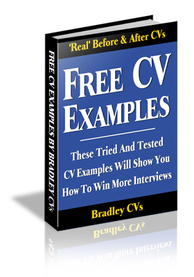 To get these free CV examples, please enter your name and email address in the form.